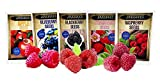 Fruit Combo Pack Raspberry, BlackBerry, Blueberry, Strawberry, Apple 975+ Seeds UPC 695928806584 & 3 Free Packs of Raspberry Seeds