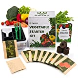 KORAM Vegetable Garden Starter Kit - 10 Organic Salad Seeds Organic Growing Kit DIY Gardening Starter Set with Everything a Gardener Needs for Growing Tomatoes Peppers Broccoli Cucumber Beets Kale