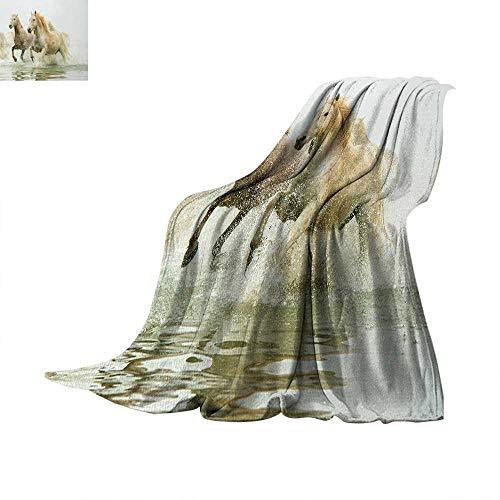 (Horses Super Soft Lightweight Blanket Camargue Horses in Water Ancient Oldest Breed Southern France Origin Artful Photo Summer Quilt Comforter 50