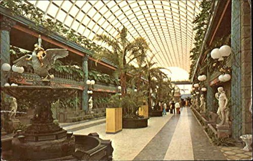 Kapok Tree Inn Mall Clearwater, Florida Original Vintage - Mall Clearwater