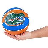 FSU Florida State University Gators Mini Basketball (1)