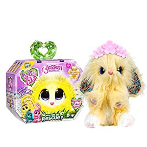 Little Live Scruff-A-Luvs S2 Blossom Bunnies Single Pack Assorted
