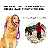 Dog Leash, Jakpak Extra Heavy Duty Nylon Pet Leashes for Dog Flexible Rope Leash 4Ft Long with Free Adjustable Dog Collar Comfortable Hand Grip Easy Control Training Leash Large Medium Dogs Blue Red