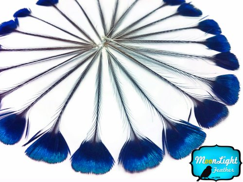 Corona Costume (Moonlight Feather, Peacock Feathers - Blue Iridescent Peacock Crown / Corona Loose Feathers - 10)