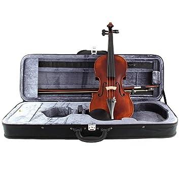 Stagg vn-4/4 HG funda para violín: Amazon.es: Instrumentos ...