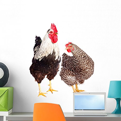 Wallmonkeys Rooster and Chicken Wall Decal Peel and Stick Graphic WM176572 (24 in W x 23 in H)
