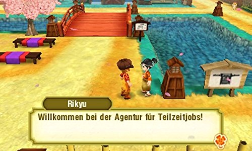 Story of Seasons 2: Trio of Towns [3DS]