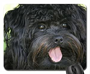 Bichon Frise Cute Cool Decorative Design Animal Dog Mousepad
