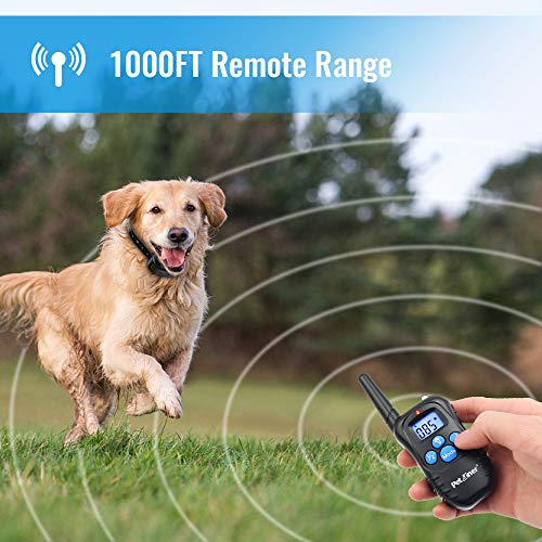 Buy bark collar with remote