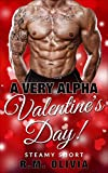 A Very Alpha Valentine's Day!: Older Woman Younger Man