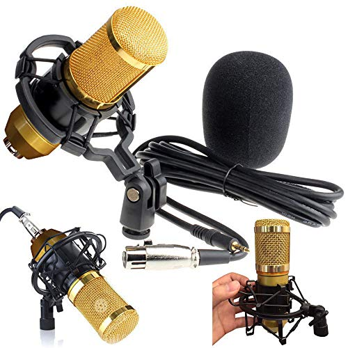 raillery Condenser Microphone Bundle, BM-800 Mic Kit with Adjustable Mic Suspension Scissor Arm, Metal Shock Mount and Double-layer Pop Filter for Studio Recording & Broadcasting (Gold) ()
