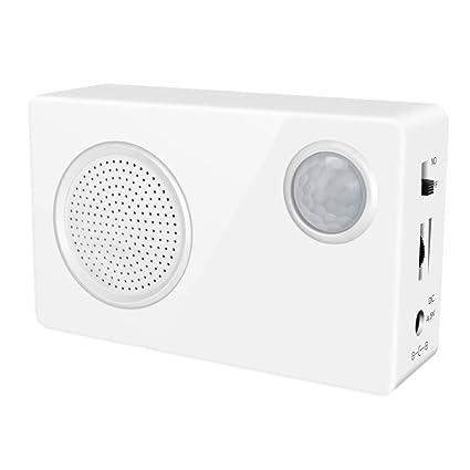 Amazon.com: Mini PIR Motion Sensor- Welcome Alarm-Sound ...