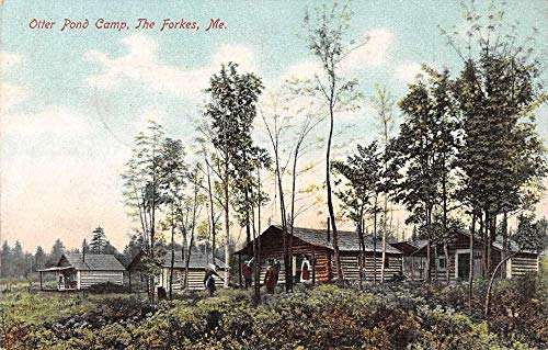 The Forkes Maine Otter Pond Camp Log Cabins Vintage Postcard JA454852 ()