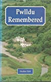 img - for Pwlldu Remembered: The Story of Gower's Smallest Village book / textbook / text book