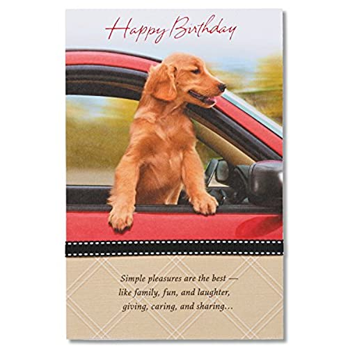 Dog Birthday Card Amazon