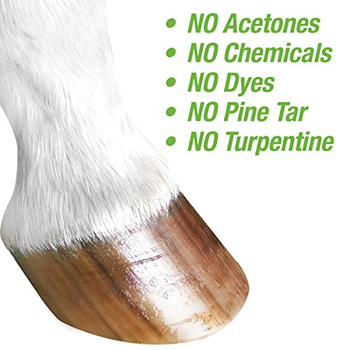 The 8 best hoof oil applicator