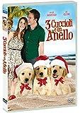 3 Cuccioli e un Anello (DVD)