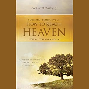 A Different Perspective on How to Reach Heaven Audiobook