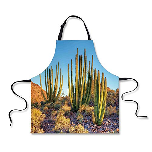 iPrint Cooking Apron,Cactus Decor,Photo of Nature Desert Cac