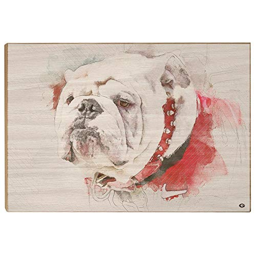 (Georgia Bulldogs - UGA Painting Wood Art)