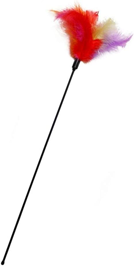Karlie Gato Plumero Tube con Plumas L: 45 cm Multicolor: Amazon.es ...