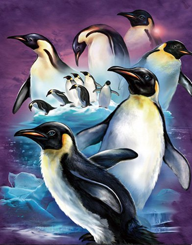 3D Home Wall Art Decor Lenticular Pictures, Penguins Collection Holographic Flipping Images, 12x16 inches Animal Poster Painting, Without Frame, Cute - Penguin 3d