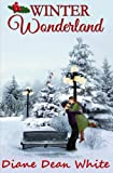 img - for Winter Wonderland book / textbook / text book