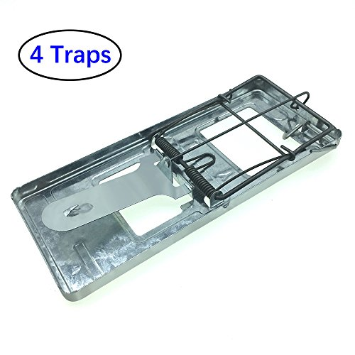Trapro Metal Rat Trap Snap Trap for Rats and Other Large Rodents (Pack of 4) (Trap Large)