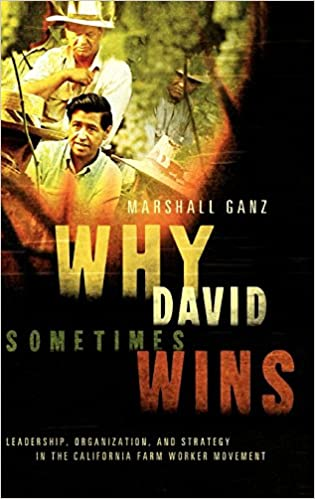 and Strategy in the California Farm Worker Movement Why David Sometimes Wins Organization Leadership
