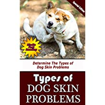 Types of Dog Skin Problems: Determine The Types of Dog Skin Problems