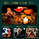 Dried Herbs Witchcraft Supplies, Natural Witch