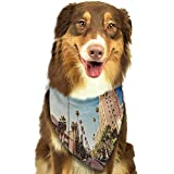 Dog Bandana Urban A Street in Beverly Hills California Palm Trees Houses Famous City Photo W27.5 xL12 Scarf for Small and Medium Dogs and Cats