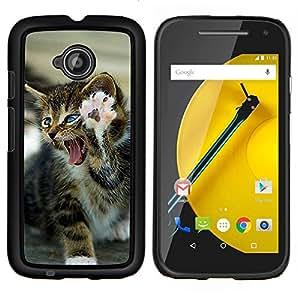 YiPhone /// Prima de resorte delgada de la cubierta del caso de Shell Armor - Gatito de la pata del león del rugido feroz gato - Motorola Moto E2 E2nd Gen