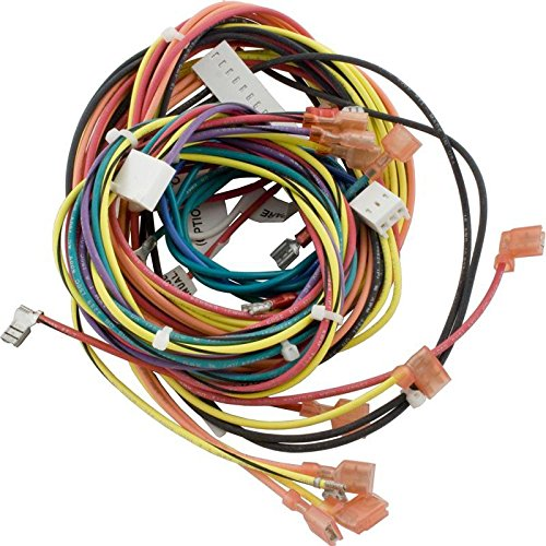 Raypak 009490F Wire Harness IID & Atmospheric