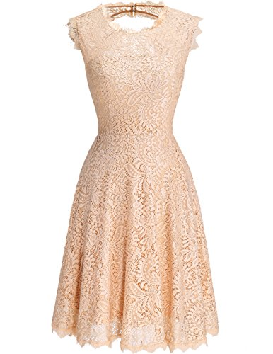 DRESSTELLS DresstellsWomen's Elegant Open Back Lace Cocktail Dress For Special Occasions Champagne S (Occasion Special Dress)