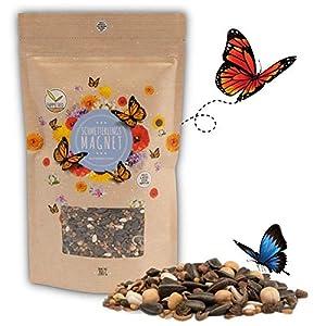 200g Semi di prato di farfalla per un prato di fiori colorati - ricco di nettare mix di semi di fiori selvatici per le… 513gACP2RmL. SS300