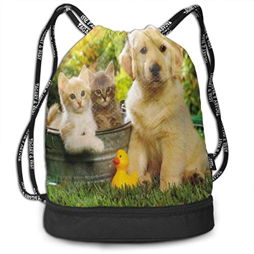 Sport Unisex Bundle Drawstring Backpack Golden Retriever Pictures And Cats Travel Durable Large Space Gym Sack Special Waterproof Multifunction Drawstring Bag ()