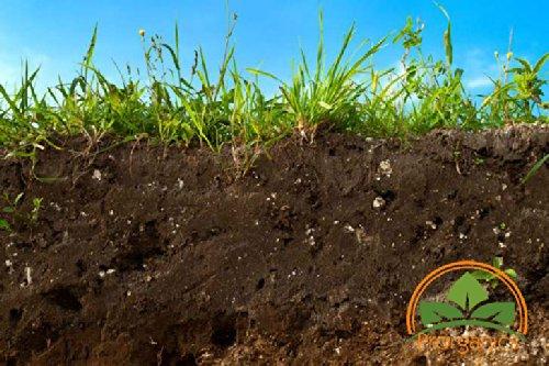 10-lb-class-a-topsoil-by-prorganics