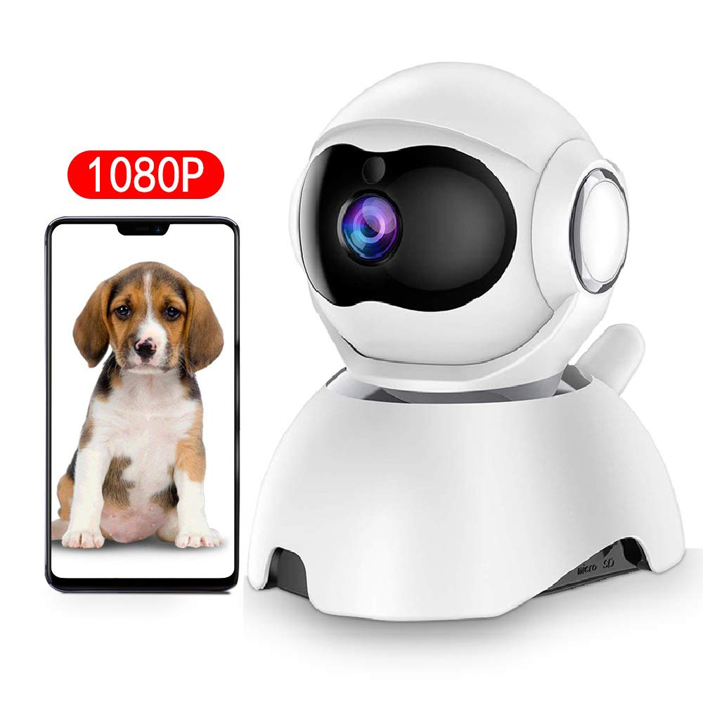 DEYAN Wi-Fi Dog Camera