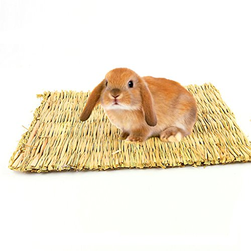 Bwogue Natural Woven Grass Mat For Hamsters,Rabbits,Hedgehog,Guinea Pig,bunny bed and Other Small Animals (2 Pack)