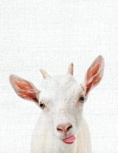 Cute Animal Composition Book Smiley Goat: 8.5 x 11'', 200 Wide Ruled Pages, Notebook for School Softcover Canvas Design: Large notebook journal for ... college (Peekaboo animal notebook) (Volume 6)