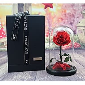 Silk Flower Arrangements sexyrobot Beauty And The Beast Red Rose, Handmade Real Rose Preserved Fresh Flower with Fallen Petals in a Glass, with Exquisite Gift Box for Mother's Day Christmas Thanksgiving Decoration