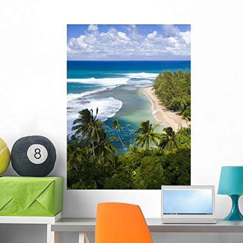 (Wallmonkeys Kee Beach from Kalalau Trail Wall Decal Peel and Stick Graphic WM77469 (36 in H x 27 in W))
