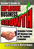 Insider's Guide to Explosive Business Growth, André Larabie, 1453718850