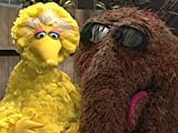 Big Bird and Snuffy Add