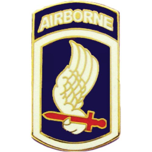 United States Army 173rd Airborne Division Military Pin Medal Military Commemorative Collectible Gifts (Division 173rd Airborne)