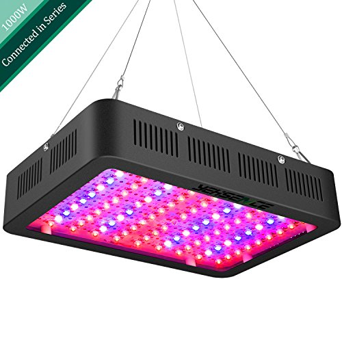 Will Plants Grow In Led Light