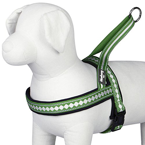 "Blueberry Pet 7 Colors Soft & Comfy Jacquard Padded Dog Harness, Chest Girth 21.5"" - 27.5"", Moss Green, Medium, Reflective Adjustable Harnesses for Dogs"