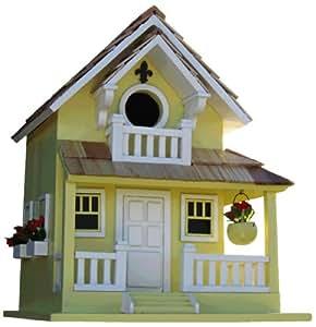 Jardín pájaro Cottage - amarillo opositor