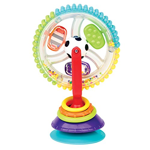 Sassy Wonder Wheel Activity Center from Sassy